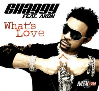 Shaggy Feat Akon - Whats Love