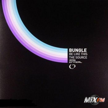 Bungle - Be Like This / The Source