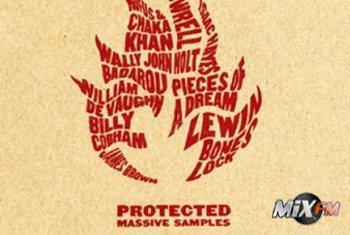 Диск «Protected» посвящается всем фанам группы Massive Attack!