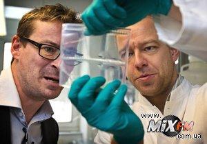 Американские ученые создали наноробота размером с молекулу