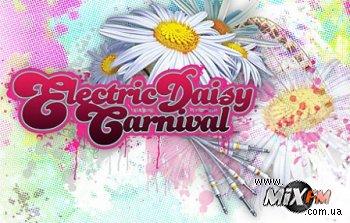 Организаторов американского Electric Daisy Carnival привлекли к суду
